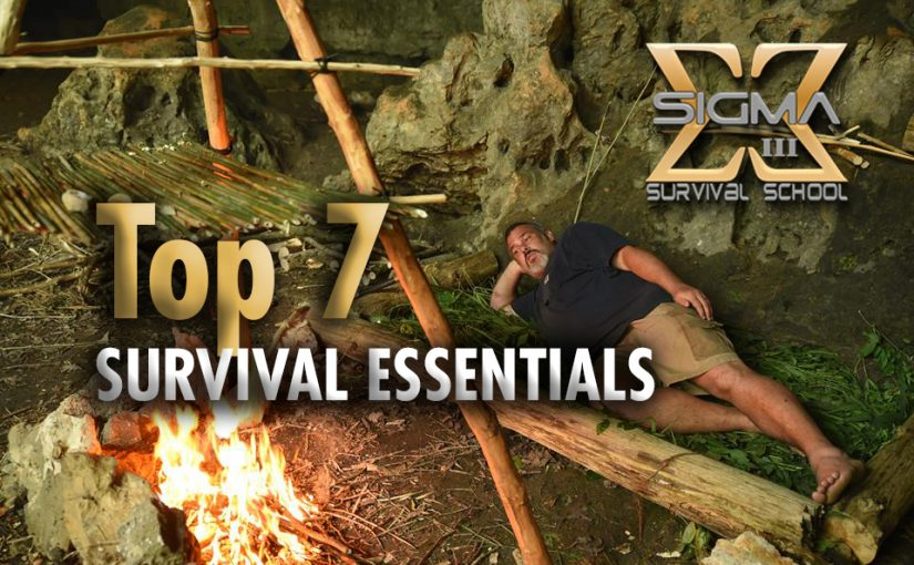 Top 7 Survival Essentials
